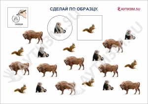 Дикие животные